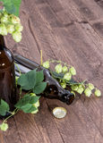 Empty bottle of Beer decorated with Hops Stock Images