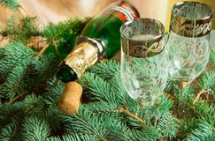 An empty bottle of champagne and a cork lying on spruce branches, near two wine glasses, focus on the tube, Christmas background royalty free stock photo