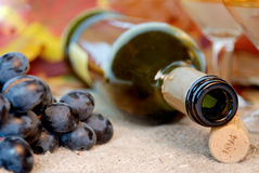 Empty bottle, cork, grapes and wineglass. Stock Image