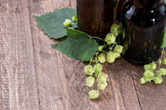 Empty bottle with Hops Royalty Free Stock Photography