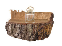 Empty bottle of perfume on a piece of birch trunk Stock Photography