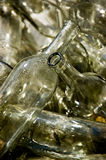 Empty Bottles. Empty wine bottles ready for recycling Stock Images