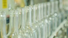 Empty bottles for alcoholic drinks on the conveyor. Wine industry. 4K video stock footage