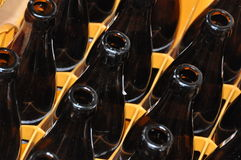 Empty bottles in case. Empty brown beer bottles in case Royalty Free Stock Images