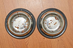 Empty bowl after cats eat. Empty food bowls after cats done eating royalty free stock photography