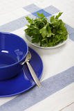 Empty bowl and plate Royalty Free Stock Image