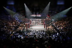 Empty boxing ring surrounded with spectators. 3D illustration.  Royalty Free Stock Images