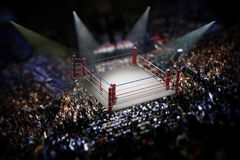 Empty boxing ring surrounded with spectators. 3D illustration.  Stock Image