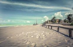 Empty Brazilian beach with palms Stock Photos