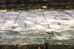 Empty brick floor. Copy space for your display or montage. royalty free stock images