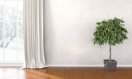 Empty bright interior . 3D render Royalty Free Stock Images