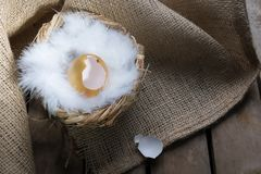 Success Symbol or Happy Easter Concept. Empty Broken Big Golden Egg on a rustic wooden natural background stock photos