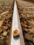 Empty broken snail shell on old rusty railway rail Royalty Free Stock Photo