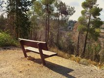 Empty brown bench with forest Royalty Free Stock Images