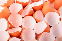 Empty brown egg shells Stock Photo