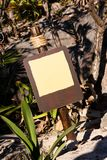 Empty Brown Sign in Tropical Surroundings Stock Images