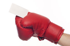 Empty business blank in boxing gloves Royalty Free Stock Photos