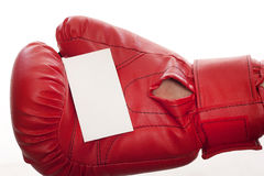 Empty business blank in boxing gloves Stock Image