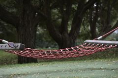 Empty cable hammock in a park Stock Photo