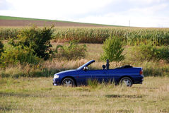 Empty cabriolet Stock Photography
