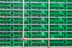 Empty cage for Chicken transport Stock Image