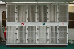 Empty cages to transport dogs on a boat stock images