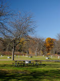 Empty Campground. In the fall Royalty Free Stock Photos