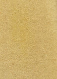 Empty cardboard texture Stock Images