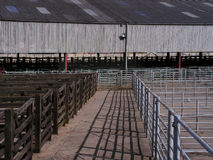 Empty Cattle Market. Cattle market pens empty waiting for sale day Royalty Free Stock Images