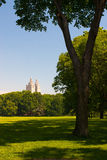 Empty Central park in the morning, New York Stock Photo