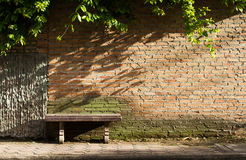 Empty chair and brick wall. With plant and shade stock photo