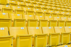 Empty Chair at Grandstand Royalty Free Stock Image