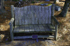 Empty Chair in the Woods Stock Photo
