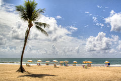 Empty chairs. At the beach of Recife, Brazil Royalty Free Stock Photos