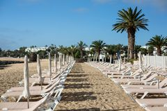 Empty chaise-lounges on the beach in the city of Costa Teguise. Island Lanzarote, Spain stock photography