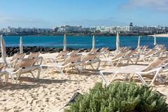 Empty chaise-lounges on the beach in the city of Costa Teguise. Island Lanzarote, Spain royalty free stock image