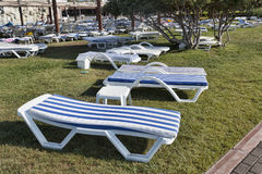 Empty chaise lounges with mattresses on the lawn at the hotel in Stock Photography