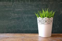 Empty chalkboard next to wooden table an flowerpot . room for text.