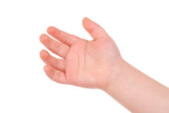 Empty children's palm on white Stock Images
