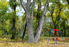 Empty childrens swing in a beautiful autumn Park. In September 2015 stock photo