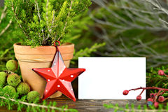 Empty Christmas card and red Christmas star Stock Image