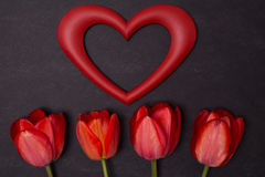 Empty clean black chalkboard with red tulips and heart frame. Royalty Free Stock Photo