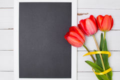Empty clean black chalkboard with red tulips and yellow ribbon. Top view, copy space. Stock Photography
