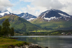 Empty coast of fjord Stock Photography