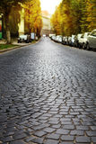 Empty cobblestone road Stock Photos