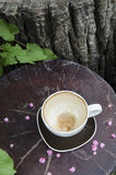The empty coffee cup in the garden corner Stock Photography