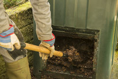Empty the compost bin. A man is emptying the compost bin Stock Photo