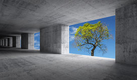 Empty concrete interior with blue sky and green tree. Empty abstract concrete interior with blue sky and small green tree outside, ecological concept vector illustration