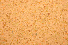 Empty cork board Stock Image