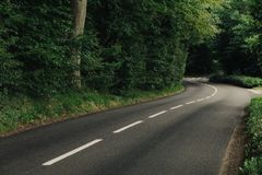 Empty country asphalt curvy road passing through the green forest in the region of Normandy, France. Nature, countryside Stock Images